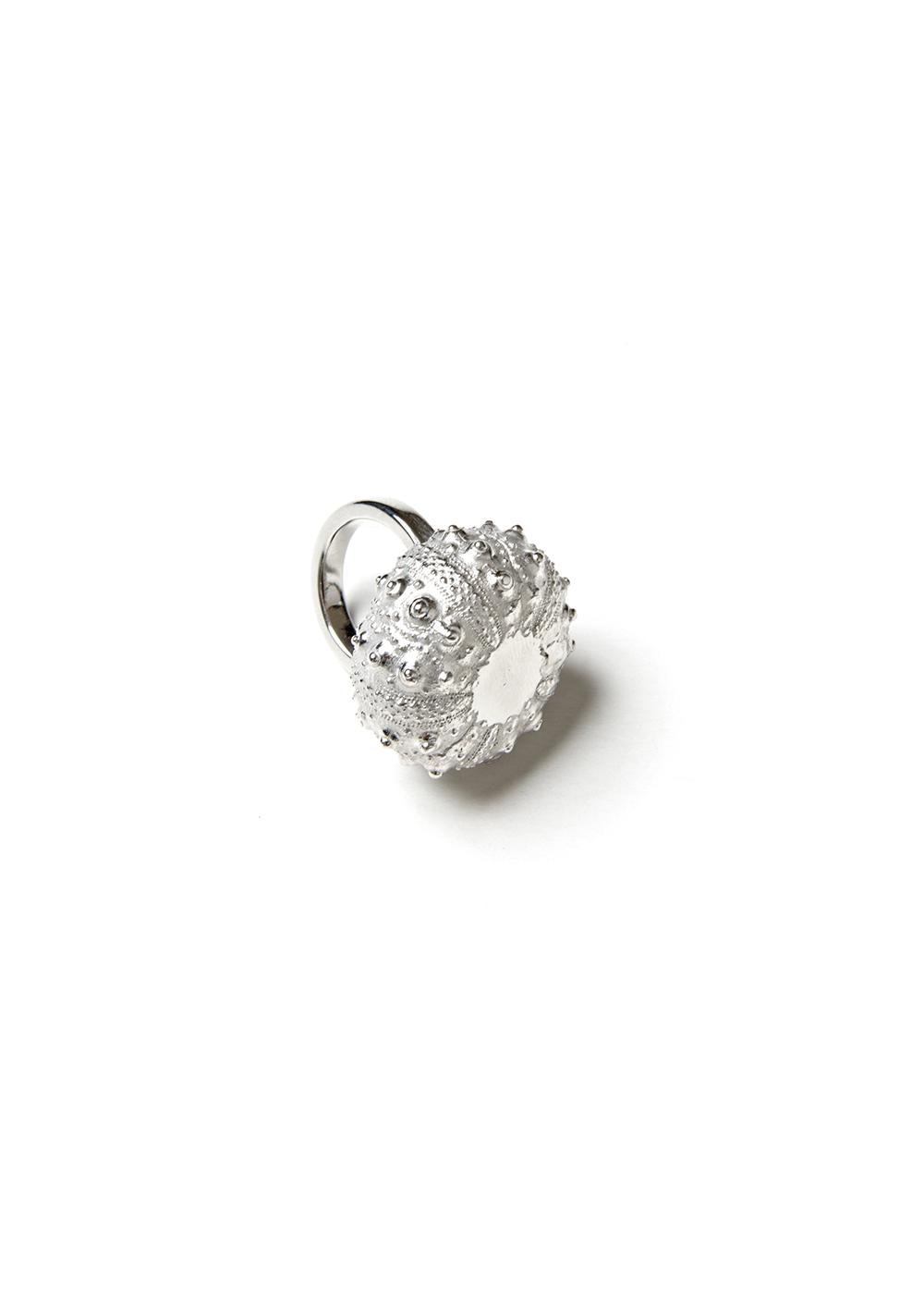 Echinite Satellite Ring