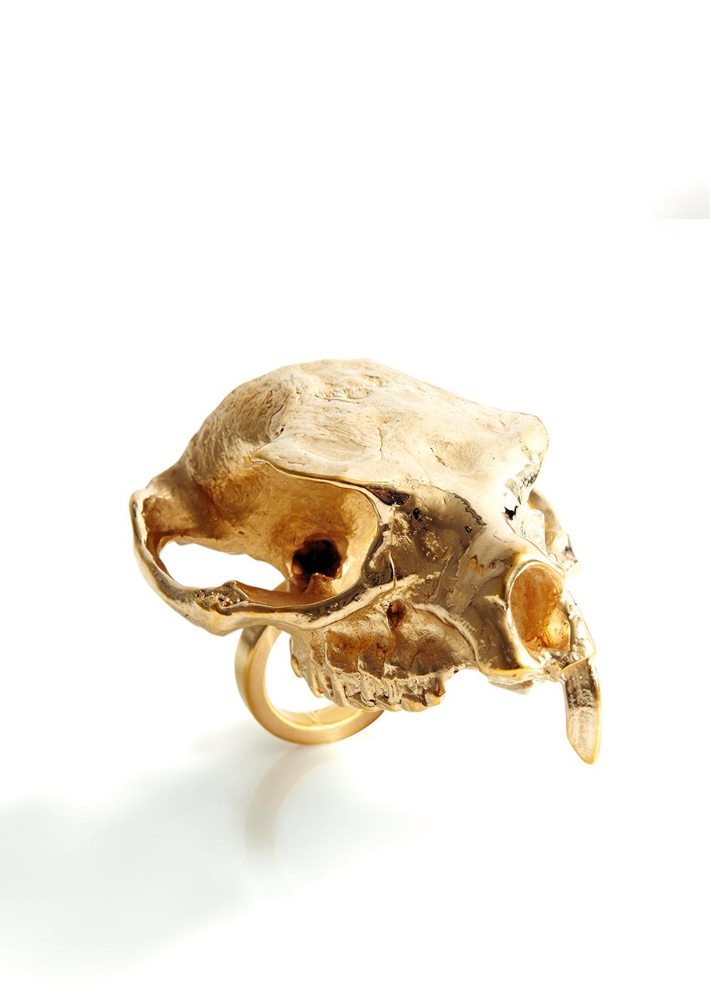skull ring, gold